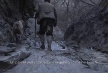 Video sulla ricerca dei tartufi
