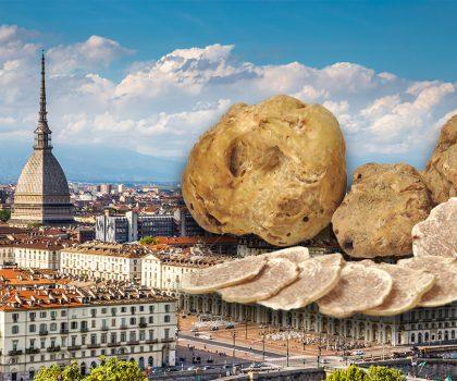 Ricerca dei tartufi a Torino